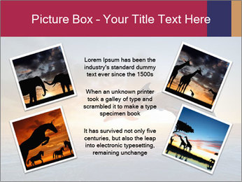 Couple jumping dolphins PowerPoint Templates - Slide 24