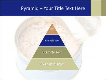 Open tuna tin PowerPoint Templates - Slide 30