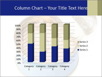 Open tuna tin PowerPoint Templates - Slide 50
