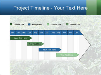 Coffee plant PowerPoint Template - Slide 25