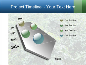 Coffee plant PowerPoint Template - Slide 26