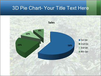 Coffee plant PowerPoint Template - Slide 35