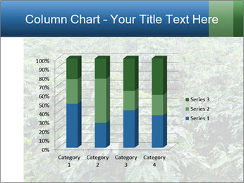 Coffee plant PowerPoint Template - Slide 50