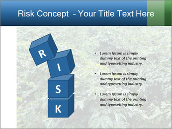 Coffee plant PowerPoint Template - Slide 81