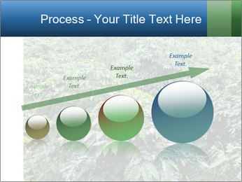 Coffee plant PowerPoint Template - Slide 87