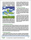 0000094564 Word Templates - Page 4