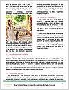 0000094567 Word Templates - Page 4