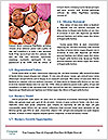 0000094573 Word Templates - Page 4