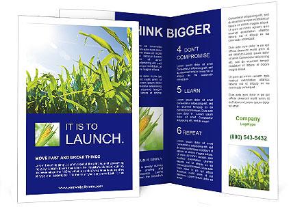 0000094578 Brochure Template