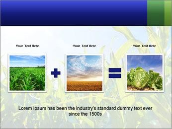 Green corn PowerPoint Template - Slide 22