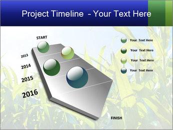 Green corn PowerPoint Template - Slide 26