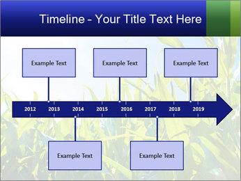 Green corn PowerPoint Template - Slide 28
