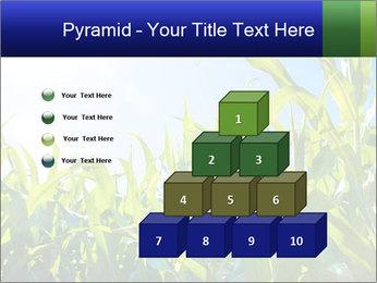 Green corn PowerPoint Templates - Slide 31
