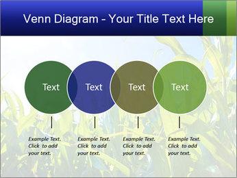 Green corn PowerPoint Template - Slide 32