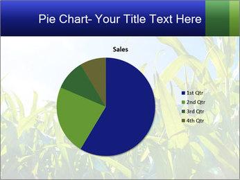 Green corn PowerPoint Template - Slide 36