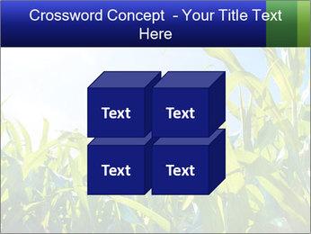 Green corn PowerPoint Template - Slide 39