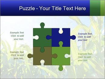 Green corn PowerPoint Template - Slide 43