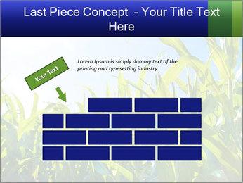 Green corn PowerPoint Template - Slide 46