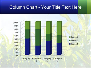 Green corn PowerPoint Template - Slide 50