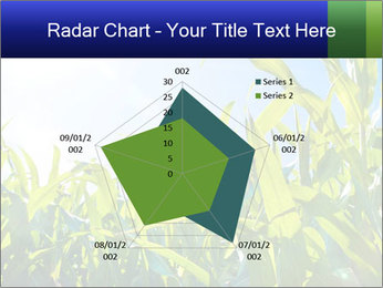 Green corn PowerPoint Template - Slide 51