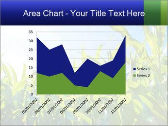 Green corn PowerPoint Template - Slide 53