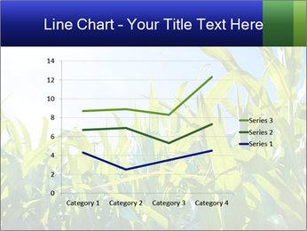 Green corn PowerPoint Template - Slide 54