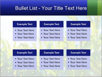 Green corn PowerPoint Templates - Slide 56