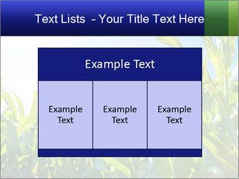 Green corn PowerPoint Template - Slide 59