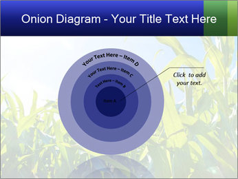 Green corn PowerPoint Template - Slide 61