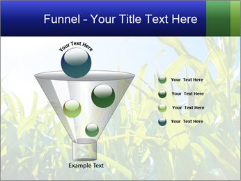 Green corn PowerPoint Template - Slide 63