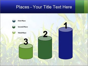 Green corn PowerPoint Template - Slide 65