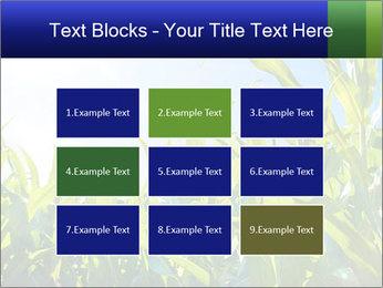Green corn PowerPoint Templates - Slide 68