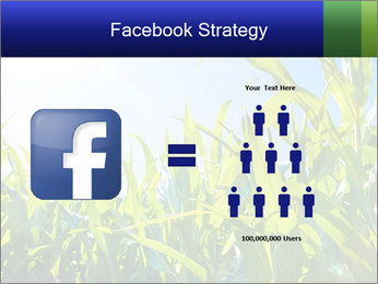 Green corn PowerPoint Template - Slide 7
