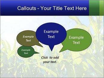 Green corn PowerPoint Template - Slide 73