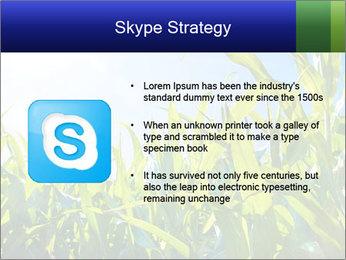 Green corn PowerPoint Template - Slide 8