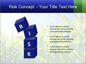 Green corn PowerPoint Template - Slide 81