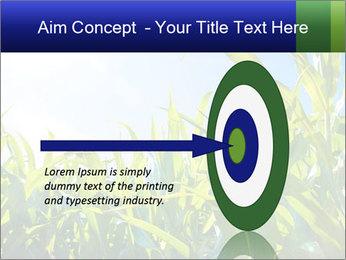 Green corn PowerPoint Template - Slide 83