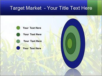 Green corn PowerPoint Template - Slide 84