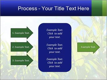 Green corn PowerPoint Template - Slide 85