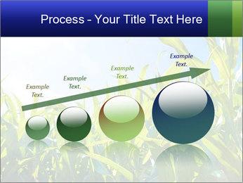 Green corn PowerPoint Template - Slide 87
