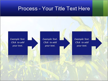 Green corn PowerPoint Template - Slide 88