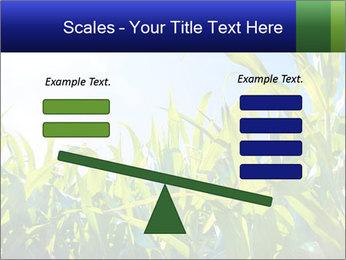 Green corn PowerPoint Template - Slide 89