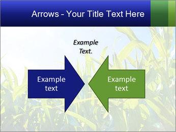 Green corn PowerPoint Template - Slide 90