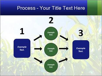 Green corn PowerPoint Template - Slide 92