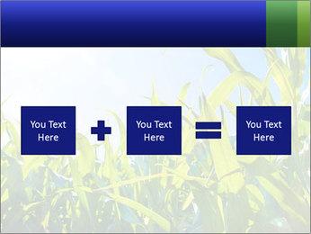 Green corn PowerPoint Templates - Slide 95