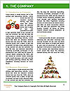 0000094579 Word Template - Page 3