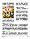 0000094581 Word Templates - Page 4