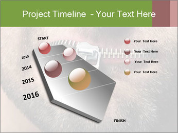 0000094582 PowerPoint Template - Slide 26