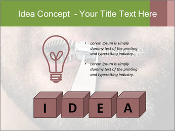 0000094582 PowerPoint Template - Slide 80