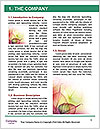 0000094588 Word Templates - Page 3